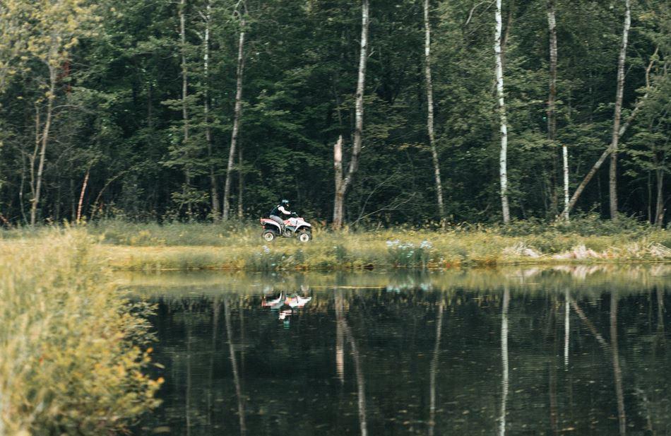 quad lac